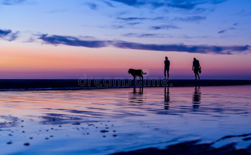 Pares silueteados que caminan el perro en la playa en la puesta del sol fotografía de archivo