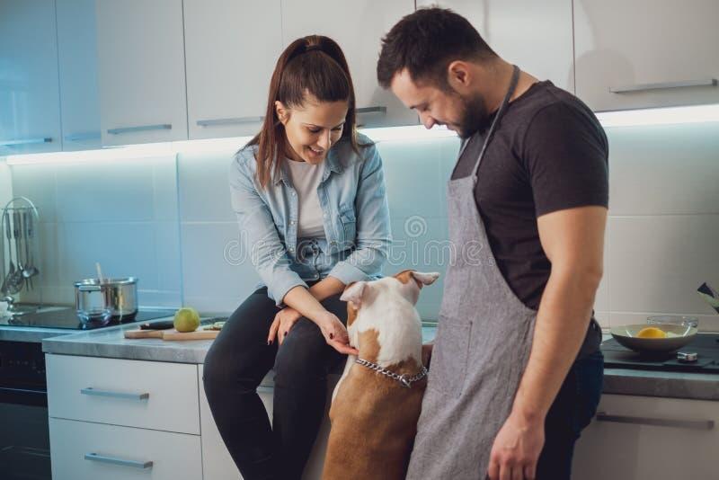 Pares sonrientes que juegan con su perro en la cocina imagenes de archivo
