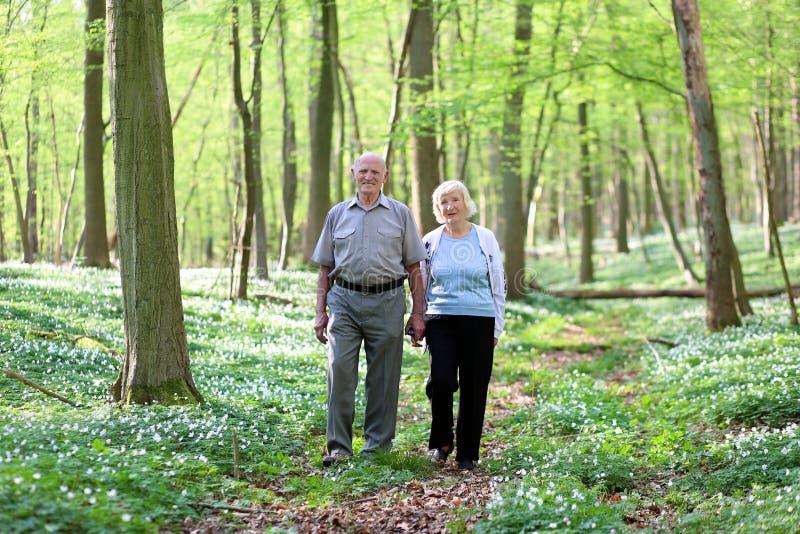 Pares superiores ativos que caminham na floresta fotografia de stock royalty free