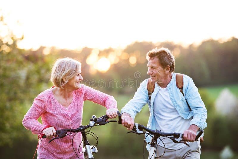 Pares superiores bonitos com bicicletas fora na natureza da mola fotos de stock