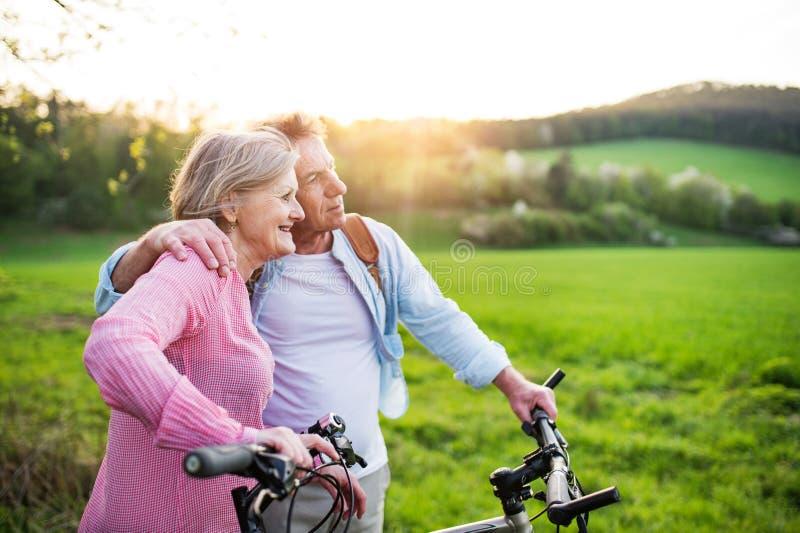 Pares superiores bonitos com bicicletas fora na natureza da mola imagem de stock royalty free