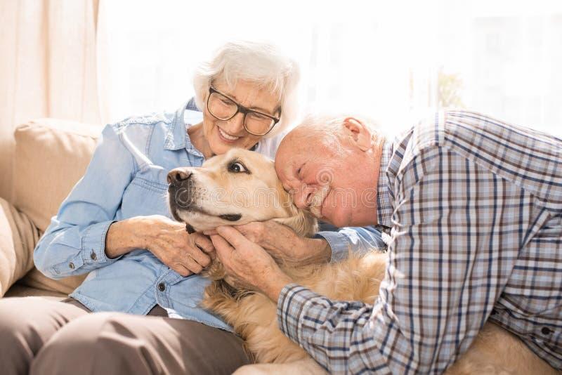 Pares superiores felizes que abraçam o cão imagens de stock