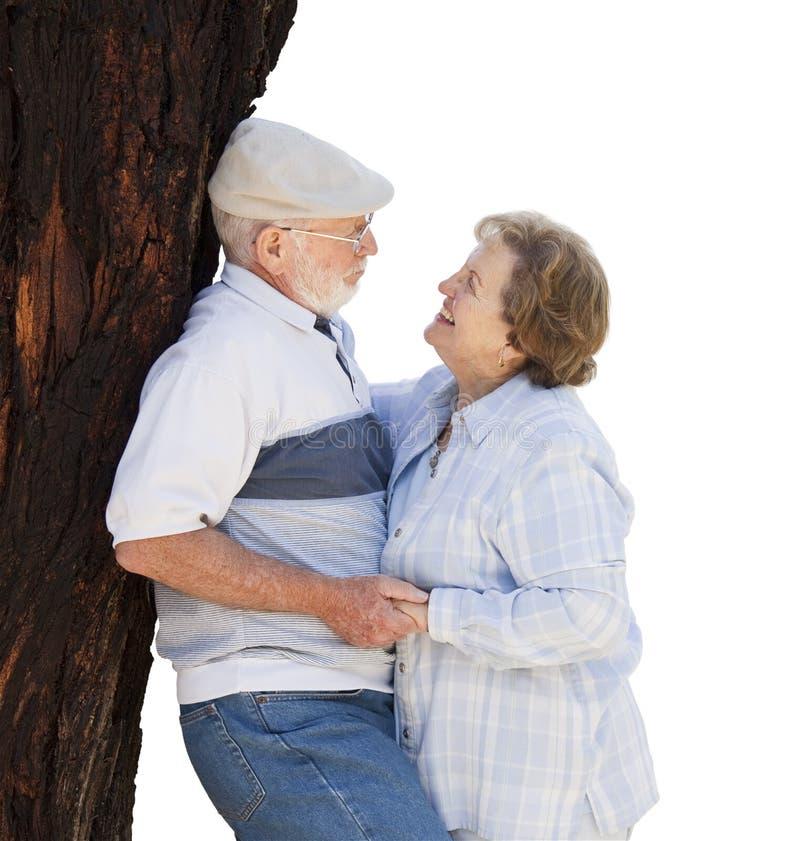 Pares superiores felizes que inclinam-se contra a árvore no branco imagens de stock royalty free