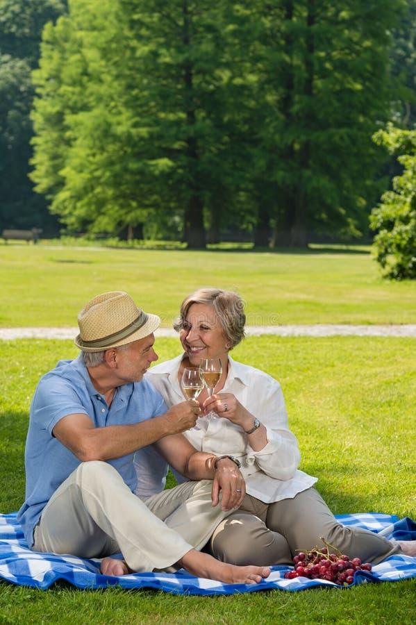 Pares superiores no dia ensolarado do piquenique romântico fotografia de stock royalty free