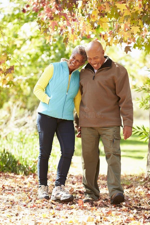Pares superiores que andam através de Autumn Woodland imagem de stock royalty free