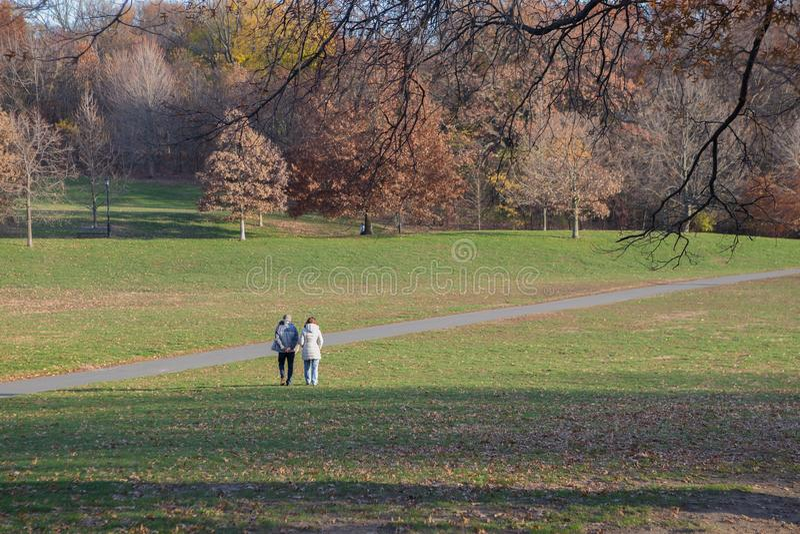 Pares superiores que andam no parque do outono imagem de stock