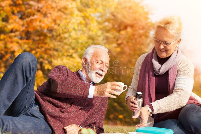 Pares superiores que apreciam o piquenique no parque do outono fotos de stock