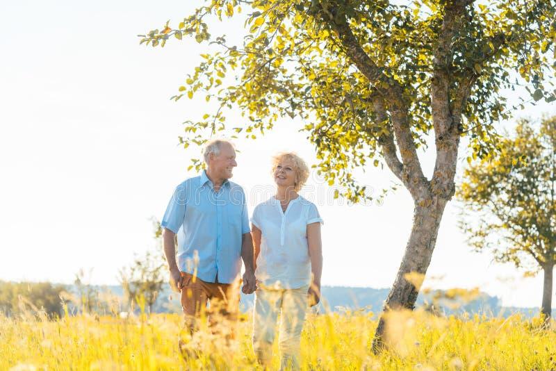 Pares superiores românticos que guardam as mãos ao andar junto foto de stock royalty free