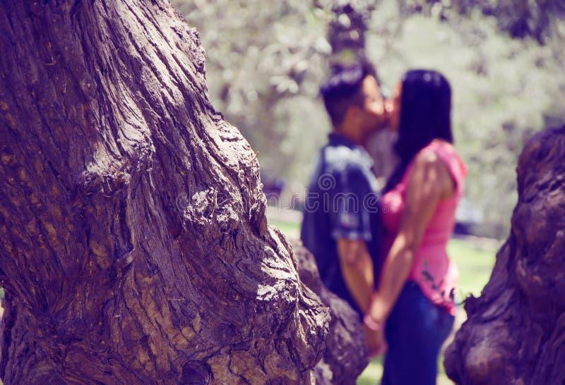 Paret gör suddig att kyssa royaltyfria bilder