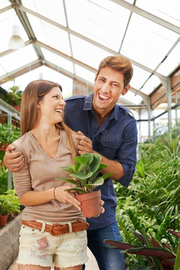 Paret har rolig shopping i trädgårdmitten royaltyfri fotografi