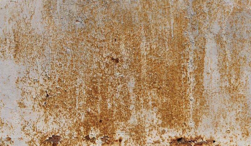 Parete arrugginita del metallo dipinta bianco La superficie di metallo ha arrugginito punti Corrosione di Rysty fotografia stock libera da diritti