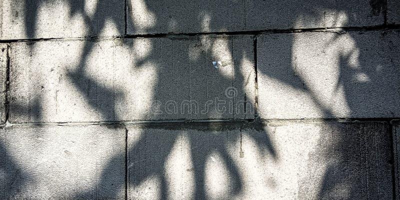 Parete con ombra fotografia stock libera da diritti