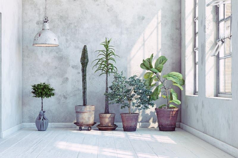 Parete d'annata con le piante messe illustrazione di stock