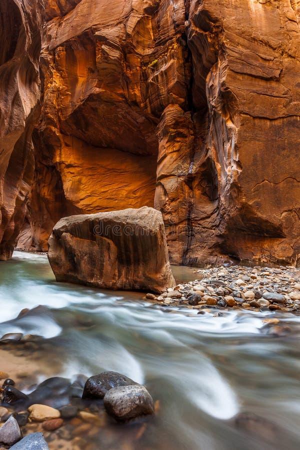 Parete d'ardore dell'arenaria, gli stretti, parco nazionale di Zion, Utah fotografia stock