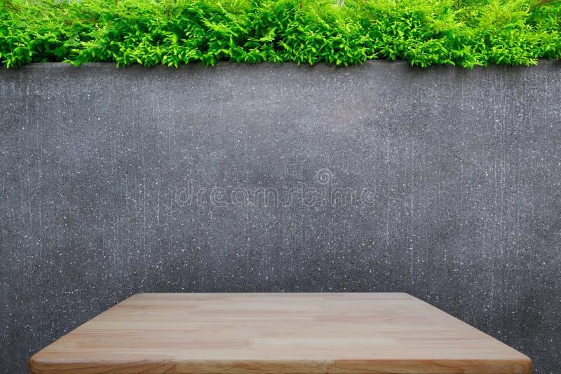 Parete del marmo o del muro di cemento e tavola di legno di legno o del pavimento con le piante ornamentali o l'albero del giardi fotografia stock