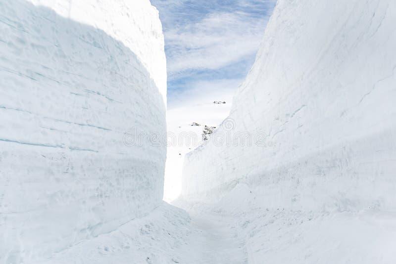 Parete della neve all'itinerario alpino di Tateyama Kurobe immagine stock