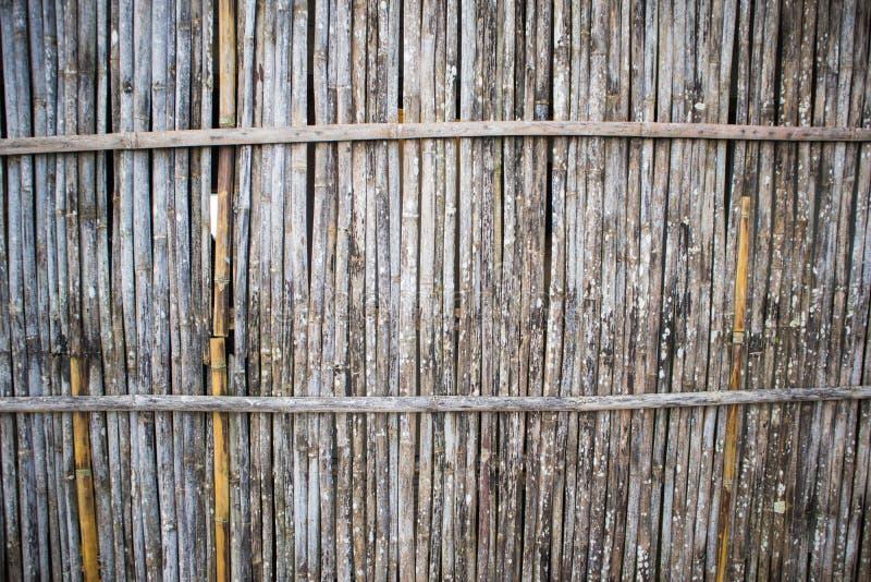 Parete di bambù immagini stock libere da diritti