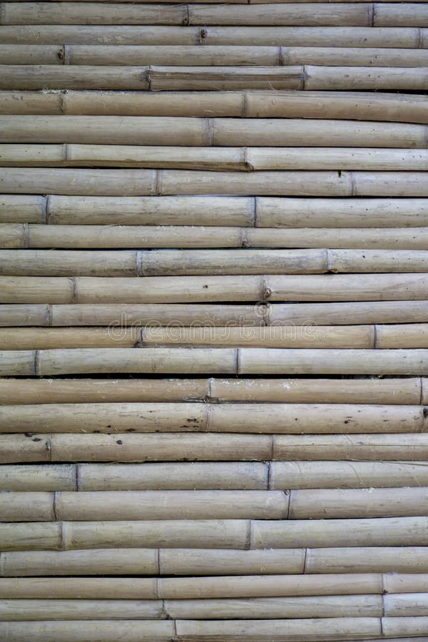 Parete di bamb? asciutta bambù marrone chiaro del ‹del †nella piccola dimensione, ‹sistemato del horizontal†fotografie stock