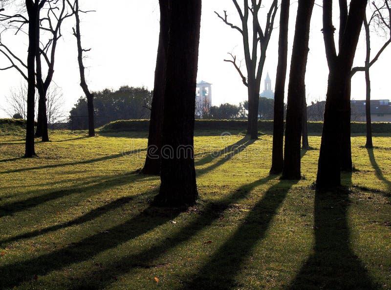 Parete di Lucca Toscana Italia fotografia stock libera da diritti