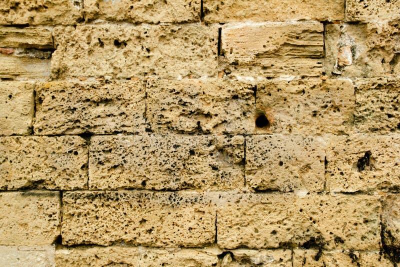 Parete di massoneria di pietra dell'arenaria delle cavalle in Majorca immagini stock libere da diritti