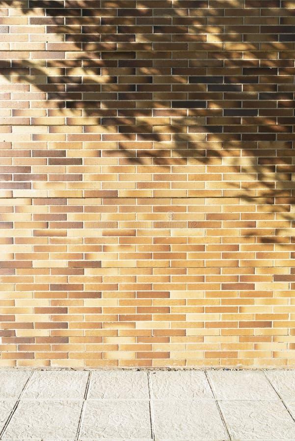 Parete di mattoni con l'ombra dell'albero ed il marciapiede grigio immagine stock