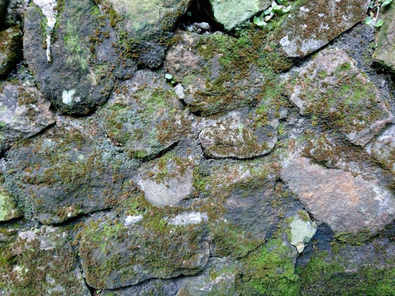 Parete di pietra ammuffita su un muro di sostegno ammorbidire l'impressione dura di pietra immagini stock