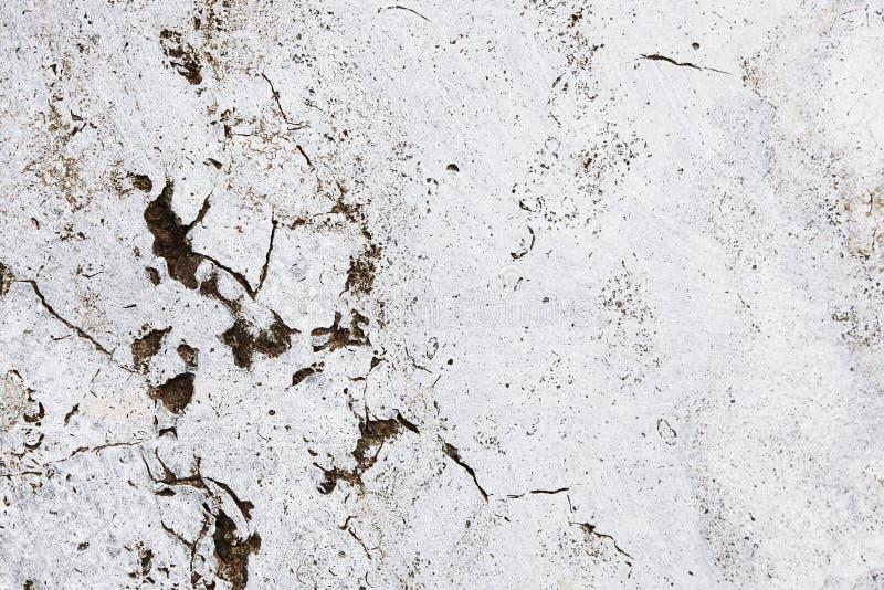 Parete di pietra bianca grungy incrinata con le imperfezioni ed i fori come fondo semplice di struttura fotografie stock libere da diritti