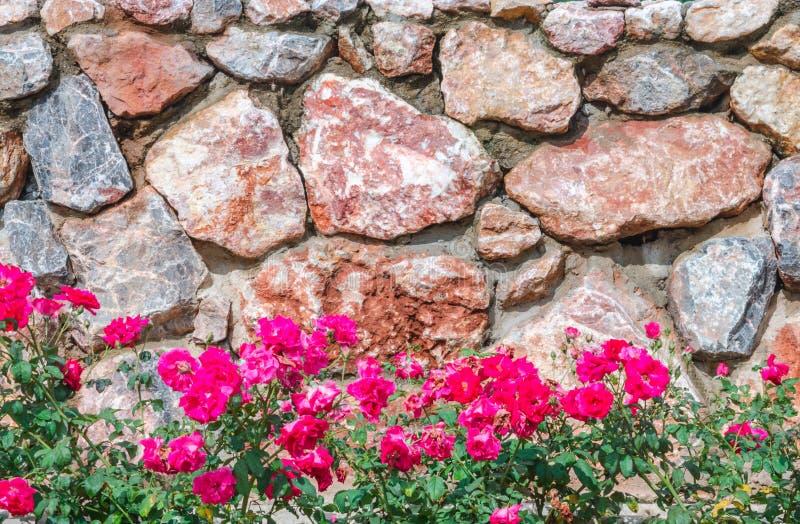 Parete di pietra con il fiore dentellare fotografia stock
