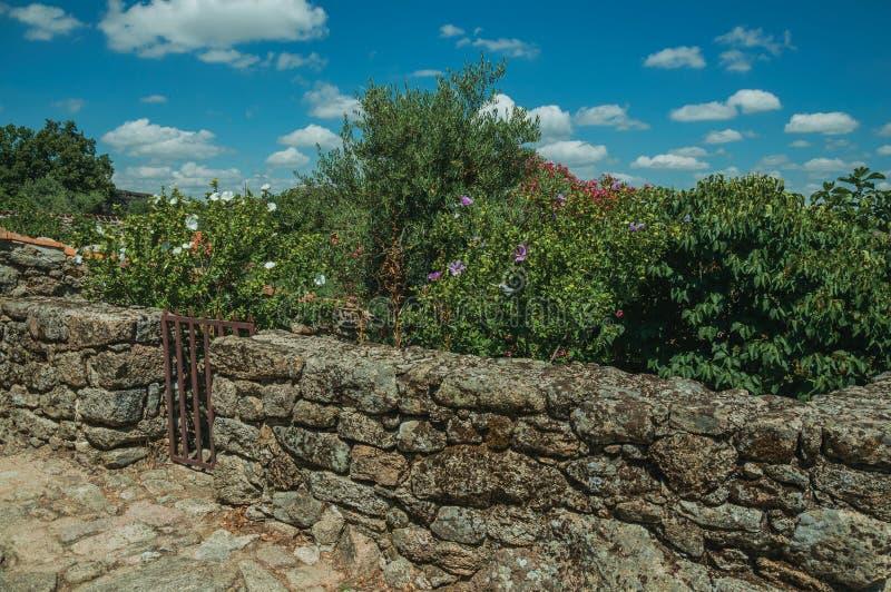 Parete di pietra con il recinto di legno davanti agli arbusti fioriti fotografie stock libere da diritti