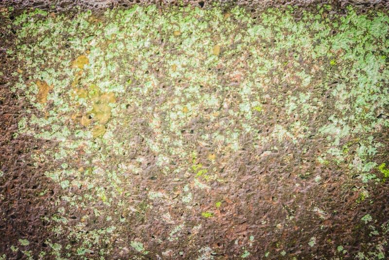Parete di pietra della laterite con crescita del muschio e dell'erba che forma bello strutturato sulla superficie per fondo Vecch fotografie stock