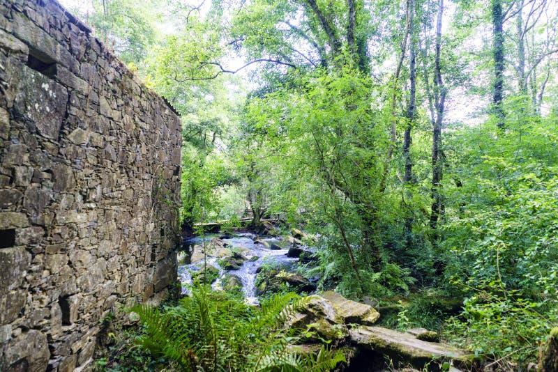 Parete di una casa di pietra rovinata e di piccolo fiume della montagna con un ver immagini stock