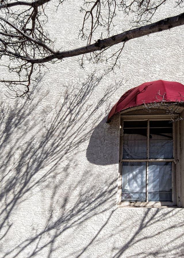 Parete e finestra dello stucco, con le ombre dell'albero fotografia stock libera da diritti