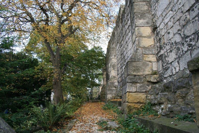 Parete medievale di York, York, Inghilterra immagini stock