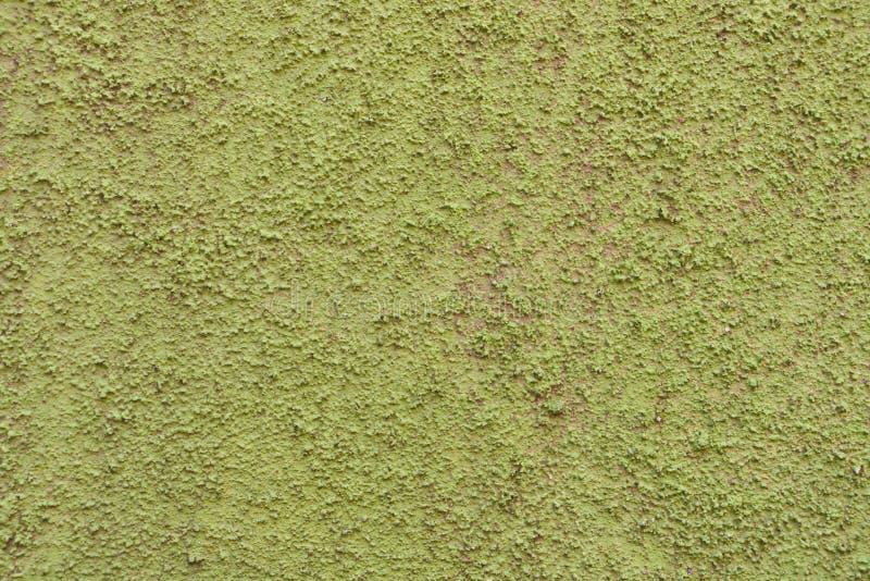 Parete verde dello stucco fotografia stock