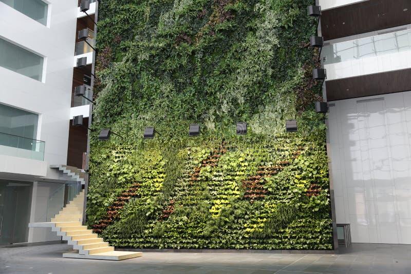 Parete Verde Ufficio : Ufficio verde pubblico: incontro con il dott donadel ufficio verde