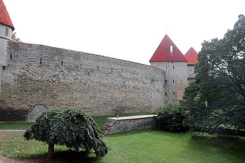 Pareti della fortezza di Tallinn, Estonia Le pareti ed i molti portoni sono ancora oggi in gran parte extant fotografie stock libere da diritti