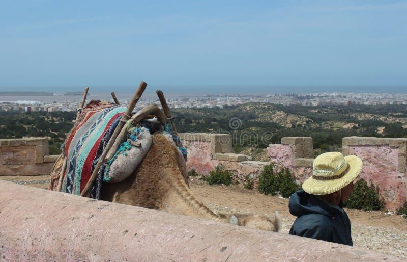 Pareti di Essaoiura immagine stock