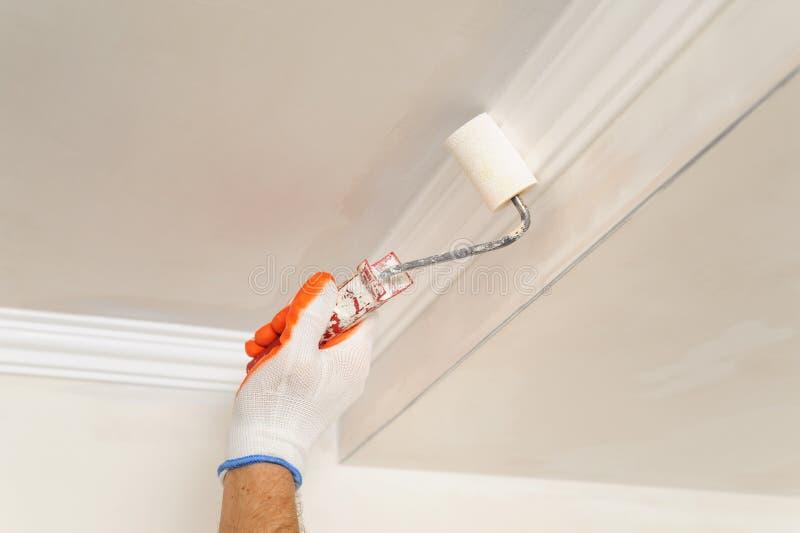 Pittura Per Soffitti Cucina : Immagini pitture pareti. download pareti e soffitti della pittura