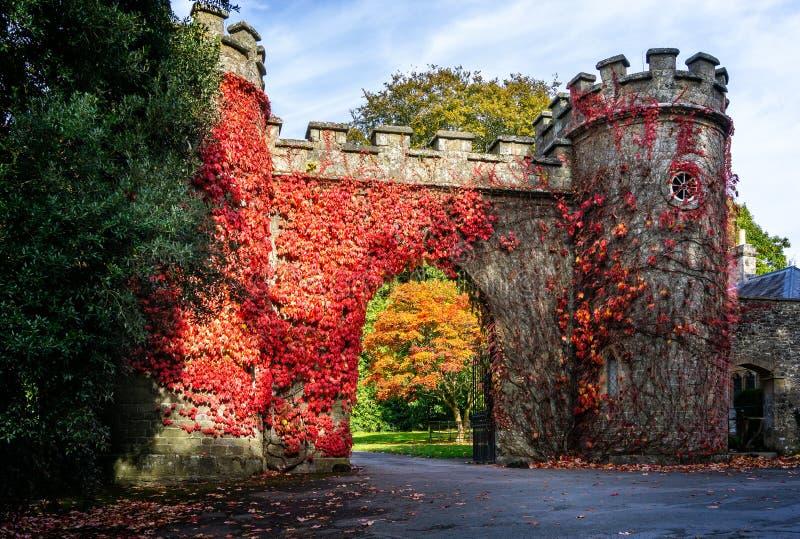 Pareti rosse del gatehouse del castello della copertura dell'edera di autunno a Stourhead, Wiltshire, Regno Unito fotografia stock