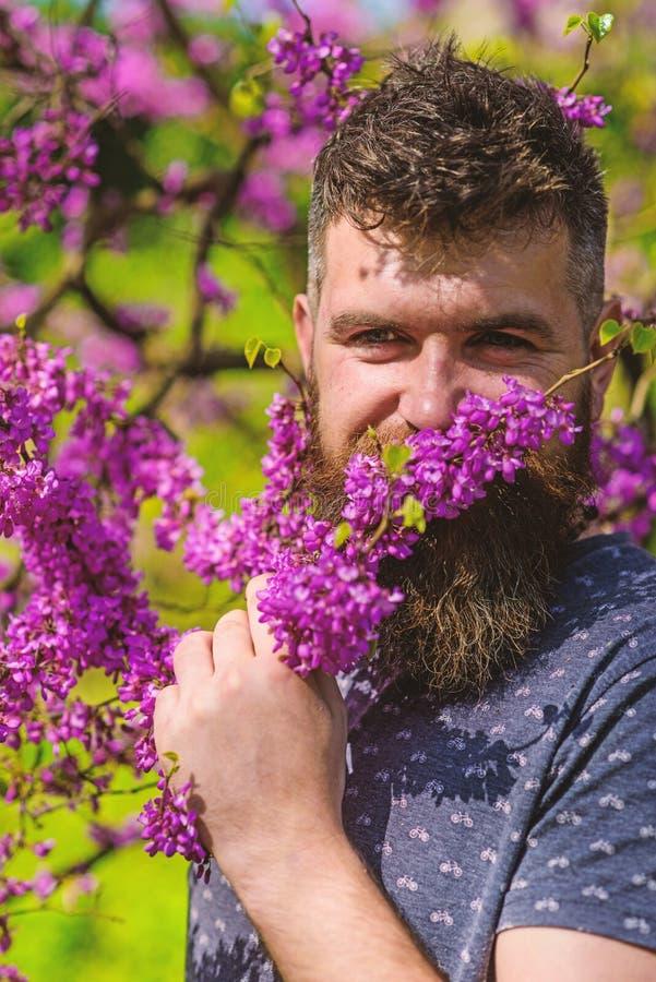 Parfümerie und Duftkonzept Hippie genießt Aroma der violetten Blüte Bärtiger Mann mit neuem Haarschnitt schnüffelt Blüte von stockfoto