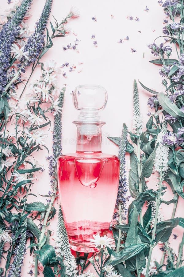 Parfümflasche mit Anlagen und Blumen, Draufsicht Parfümerie, Kosmetik, botanischer Duft lizenzfreies stockbild