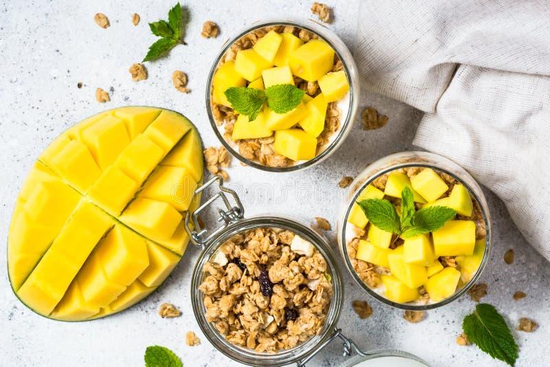 Parfait med bästa sikt för yoghurt, för mango och för granola royaltyfri foto