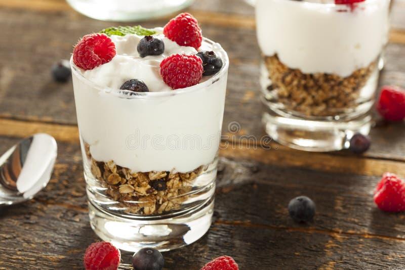 Parfait organico casalingo della frutta fresca fotografia stock