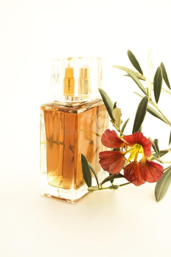Parfum photos stock