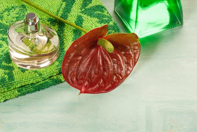 Download Parfum stock afbeelding. Afbeelding bestaande uit essentie - 29502325