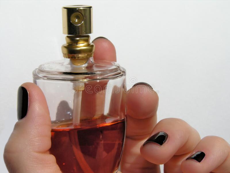 Parfume royalty free stock images