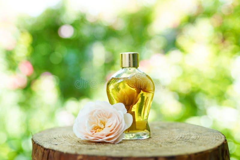 Parfymera flaskan eller olja på naturlig träbakgrund, kopieringsutrymme, modell arkivfoto