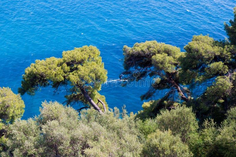 Parga overzees eilandblauw onder groene pijnboombomen Griekenland royalty-vrije stock afbeelding