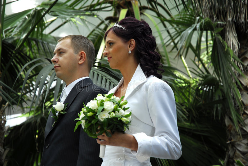 pargrönskabröllop royaltyfria foton