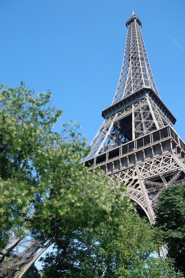 Parigi - torre Eiffel immagine stock libera da diritti